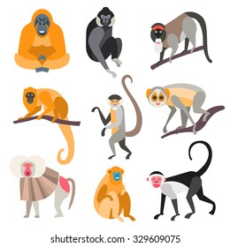 Collection of monkeys in flat style, vector illustration