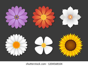 Collection of multiple different pretty shaded flowers