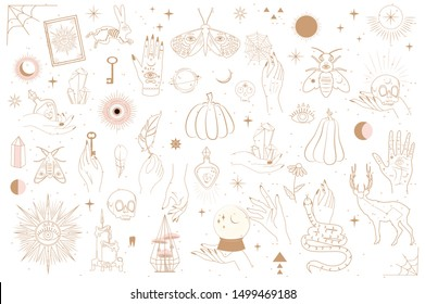 Collection of Mystical and Mysterious objects, Skulls, Animals, Space objects, magic ball, Crystals, human hands. Minimalistic objects made in the style of one line. Editable vector illustration.