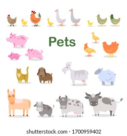 Collection of pets Agricultural set: chicken rooster duck goose turkey calf cow bull piglet goat sheep cat dog horse Vector stock illustration White isolated background Cute stylized baby animals