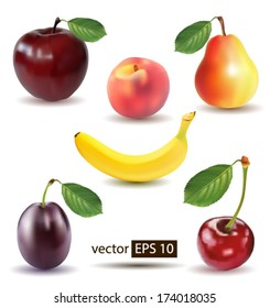 Collection of photo-realistic vector fruits.