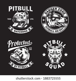 Collection of Pitbull Emblem and Logo Vector Illustration