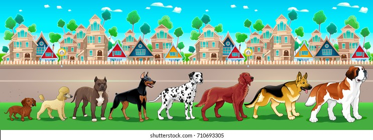 Collection of purebred dogs aligned on the town view. Vector cartoon illustration