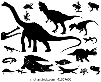Collection of reptiles