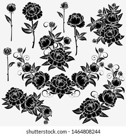 Collection of roses on a white background.  Isolated
