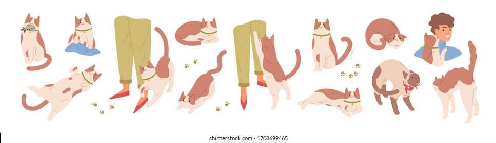Collection of scenes with cute cat. Various pet emotions. Friendly, scared, sharing food, ready to attack, rubbing, threatening, sharing food, worrying kitty. Vector illustration in flat cartoon style