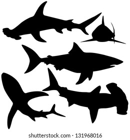Collection of sharks isolated on white (Vector)