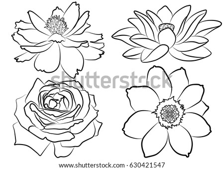 Collection Of Silhouette Flowers Isolated On White Background Floral Set With Marigold Rose