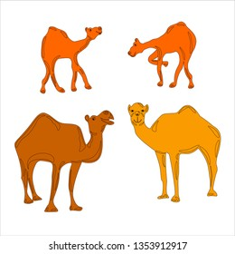 Collection. Silhouette. Funny camel's family. They are  standing. Little camels are playing. The camels have a beautiful smiles. Set of vector illustrations.