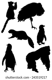 Collection of silhouettes of animals