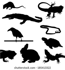 Collection of silhouettes of animals and reptiles
