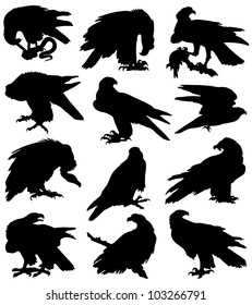 Collection of silhouettes of birds of prey