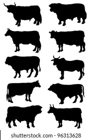 Collection of silhouettes of cows and bulls