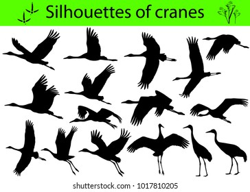 Collection of silhouettes of cranes