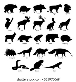 Collection of silhouettes of forest wild animals