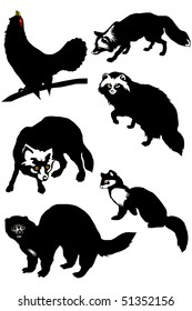 Collection of silhouettes of fur animals of the north and Alaska, a wood-grouse eps10