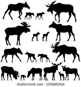 Collection of silhouettes of mooses also named elks and its cubs