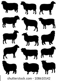 Collection of silhouettes of sheep