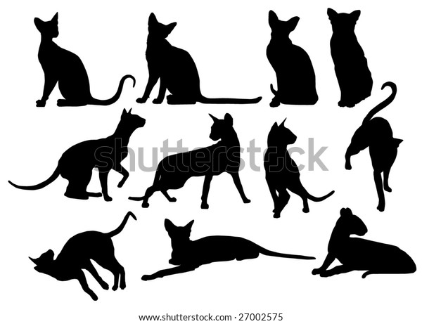 Collection of silhouettes of Siamese cats  - vector