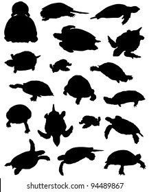 Collection of silhouettes of turtles