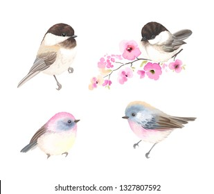 Collection small cute birds in vintage watercolor style. Vector illustration with colorful flowers on branches tree.