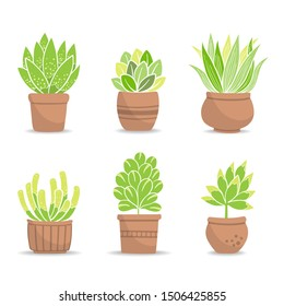 Collection of small green bushes in baked clay flowerpot. Potted plants; Vector Illustration.