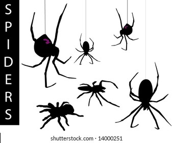 A collection of Spider silhouettes