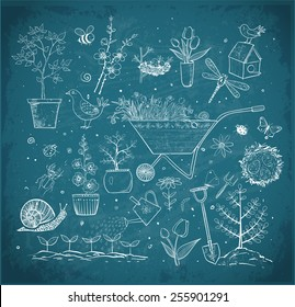 Collection of spring doodle sketch elements: flowers, gardener's tool, bugs, spring trees, bird's nests with eggs on blackboard