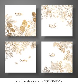 Collection of square gold cards with berries. Vector vintage frame with blackberry, bluberry, cranberry, currant. Great for label, poster, packaging design, wrapping paper, menu