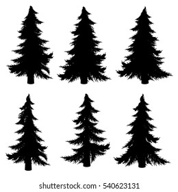 Collection of stylized black silhouettes of fir tree on white background.