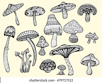 Collection of stylized mushrooms. Set mushrooms. Ornamental. Plants. Edible mushrooms. Line art. Drawing by hand. Doodle. Tattoo. Pattern.