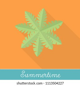 Collection of Summer Holiday Items, Flat Design with long shadow in Bright Colors: Palm Tree Leaves in Top View