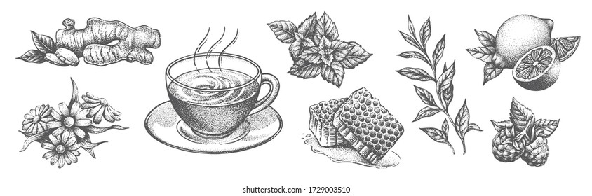 A collection of tea items on a white background.