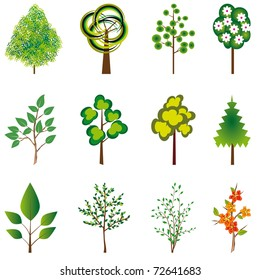 The collection of trees for design. Vector illustration