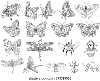A collection of tropical butterflies and insects, hand-drawn. Vector. Sketch.