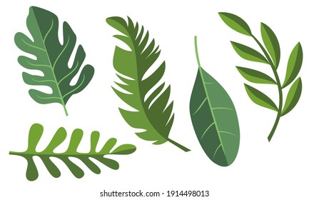 Collection of tropical leaves. Summer logo