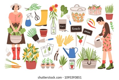 Collection of two female gardeners and gardening tools - watering can, fruit baskets, seeds, pruner, trowel, rubber boots, gloves, seedlings, potted plants. Cartoon vector illustration in flat style