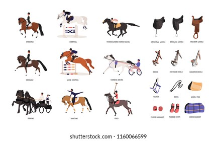 Collection of various horse gaits and tools for horseback riding or equestrianism isolated on white background. Beautiful competitive sport. Colorful vector illustration in flat cartoon style.