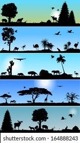 Collection of Vector banners with wold fauna and flora