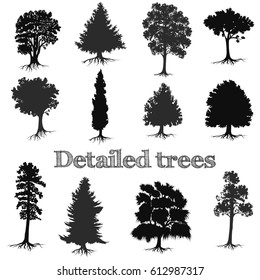 Collection of vector detailed hand drawn trees silhouettes for design