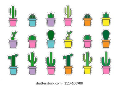 collection of vector exotic plants, cactuses and suculents in pots sticker and patches. Set of colored icons