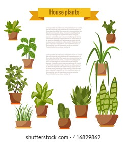 Collection of vector flat home plant pot.
