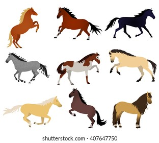 Collection of vector illustrations with horses on white background. Elements for design. Standing, jumping, racing, galloping, rearing horses.
