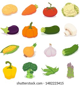Collection of vector illustrations of sixteen raw vegetables icons isolated on white background. Good for vegetarian and healthy life concept. Great for ingredient label or recipe.