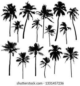 Collection of vector palm silhouettes isolated on white background for your design