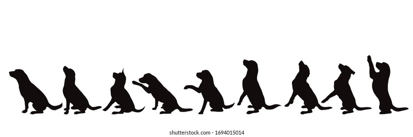 Collection of vector silhouette of dog on white background. Symbol of animal.