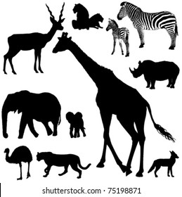Collection of vector silhouettes of African animals