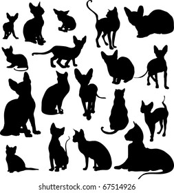collection of vector silhouettes of cats on a white background