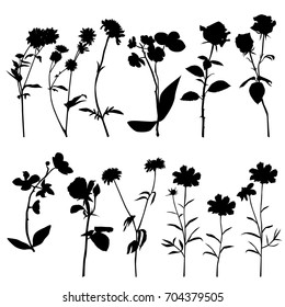 Collection of vector silhouettes of wild flowers, Daisy, orchid, chrysanthemum, dandelion, cornflower, carnation, rose,  black color, isolated on white background