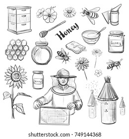 A collection of vector sketches of honey and beekeeping. Hand drawings on white background